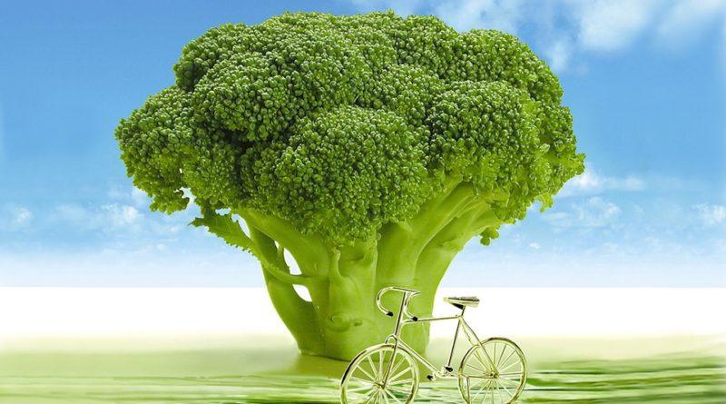 Jaké potraviny jsou dobré - brokolice